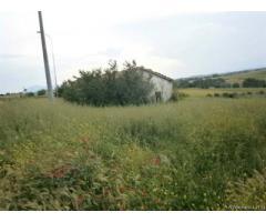 Pietrelcina: Terreno Altro