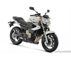 Yamaha XJ6 - Campania