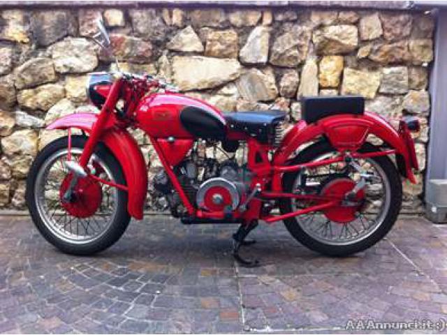 Moto Guzzi - Airone Sport 250 - 1953 - Trentino - Alto Adige