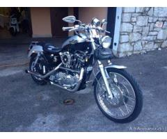 Sportster 1200 centenario - Trieste