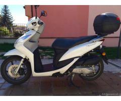 Honda Vision 50 - Abruzzo