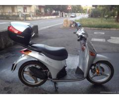MALAGUTI CIAK 50 - Padova