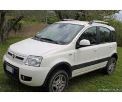 Panda Fiat 4X4 1.3 climbing Multijet anche neopatentati - Viterbo