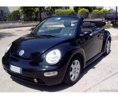 New Beetle Cabrio/Roadster 1.4 16V - Campania