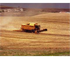 Mietitrebbia NEW HOLLAND TX68 plus Seminuova 1999