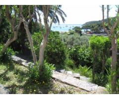 Bilocali 2/4 posti letto Fetovaia isola d'Elba