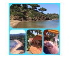 Isola d Elba sul mare