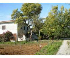Casa indipendente con 2 alloggi - Isola d'Elba