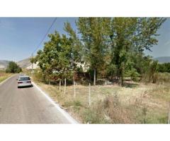 Vendita Agricolo in Via Boscofangone