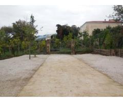 Vendita Agricolo in Via Mortella