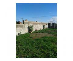 RifITI 019-SU21962 - Terreno Agricolo in Affitto a Qualiano di 800 mq