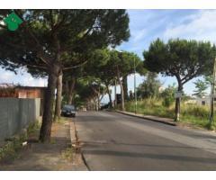 Affitto Agricolo in Via Sacerdote Cozzolino Benedetto, 0