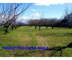 Vendita Agricolo in Via Camillo Cucca