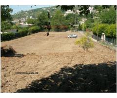 terreno coltivabile mq 4000 Euro 140.000