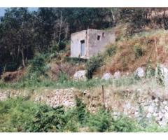 Vendita Agricolo in via PIETRA LISCIA