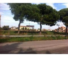 RifITI 019-5012 - Terreno Agricolo in Vendita a Giugliano in Campania di 10000 mq