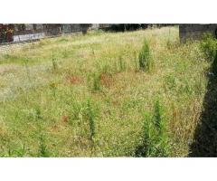 RifITI 019-SU25700 - Terreno Agricolo in Vendita a Qualiano di 500 mq