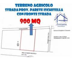 Vendita Agricolo in Strada Provinciale Santa Maria a Cubito Aversa