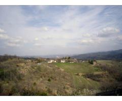 Rif: 21711044-449 - CASSINELLE ( AL ) : Casa indipendente su tre piani con terrazzo e ampio terreno