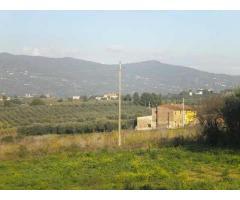 Colonica/casale in vendita a Cerreto Guidi 170 mq  Rif: 435371