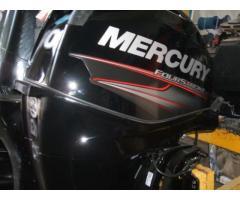 MERCURY F 40/60   2014
