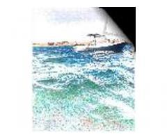 Barca da diporto