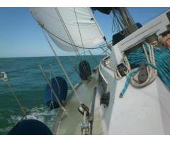 Barca a vela Fibago CX 33