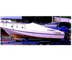 Motoscafo open Boston Whaler