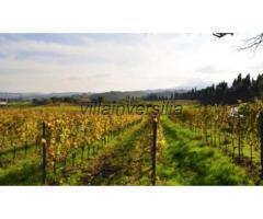 Azienda agricola in vendita a Montepulciano 70000 mq