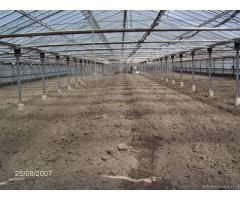 Piccola azienda agricola con serre in ferro e vetro