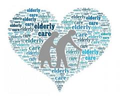 Assistenza cura e tutela degli anziani