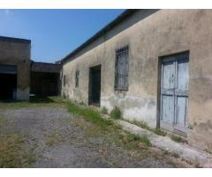 Magazzino in vendita a NAVACCHIO - Cascina 200 mq  Rif: 469149