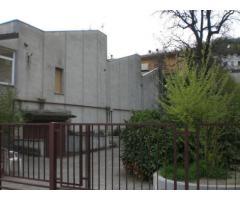 Capannone / Fondo in affitto a Monte San Pietro