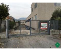 Affitto Magazzino in Via Terranova