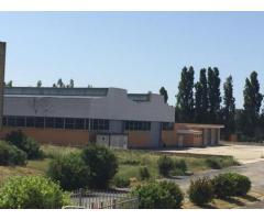 RifITI 003-40/com3 - Capannone Industriale in Affitto a Aprilia - Campodicarne di 32506 mq