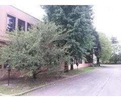 Affitto Capannone in Via Gian Lorenzo Bernini