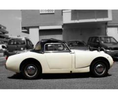 Austin Healey Sprite MK I 1959, Iscritta ASI