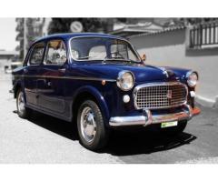Fiat 1100 Export 1961, Perfetta, Iscritta ASI