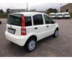 FIAT Panda 1.3 MJT 16V 4x4 rif. 7194293