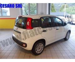 FIAT Panda 1.2 Easy rif. 7012439