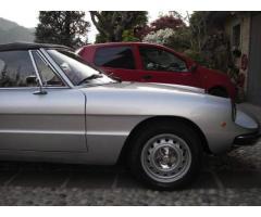 Alfa Romeo Spider 1600 Coda Tronca - Anno 1981