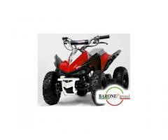 Miniquad Monster 50cc E-Start R6