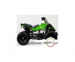 Miniquad Monster 50cc E-Start R6