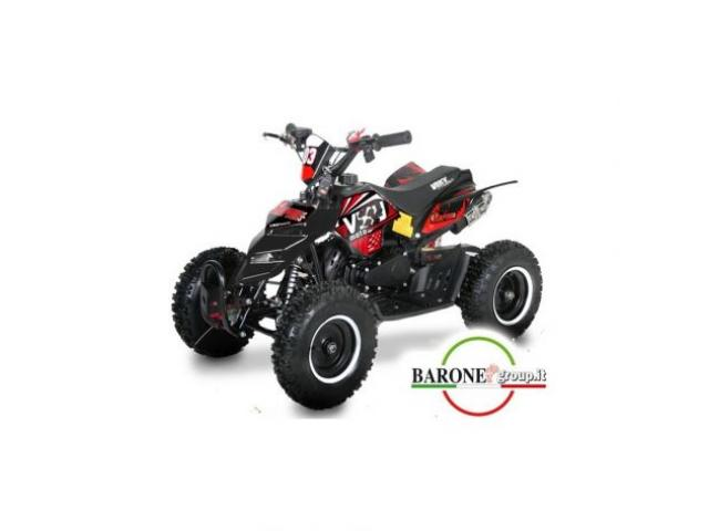 Miniquad Raptor Big 50cc R6