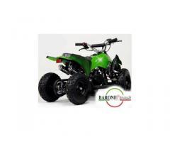 Miniquad Raptor Big 50cc E-Start R6