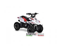 New Quad Bamboo 50cc