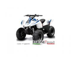 New Quad Lem Big foot 110cc