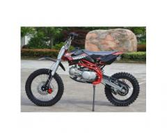 Pit Bike SCORPION 125 cc 17 14