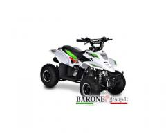 Quad Bamboo 110cc R6