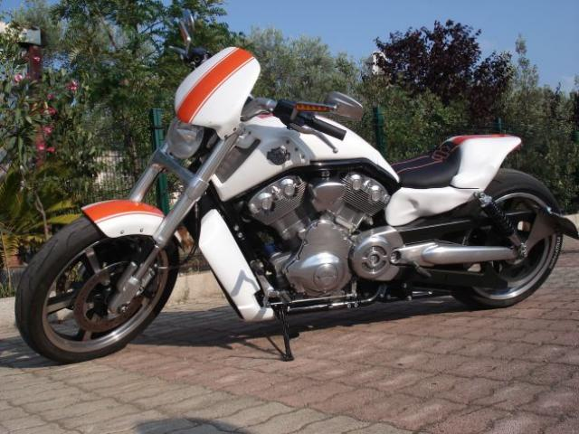 Harley Davidson V-Rod Muscle 1250cc Special Custom Unica